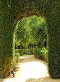 Jardim do Alcazar real em Sevilha, Spain Fotografia de Stock Royalty Free