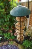 Jardim A do alimentador do pássaro Foto de Stock Royalty Free