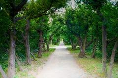 Jardim do castelo em Kromeriz, CZ Fotos de Stock Royalty Free