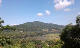 Jardim do coco de Batu Mulik Imagem de Stock Royalty Free