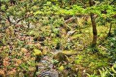 Jardim do ESTILO de JAPÃO Foto de Stock Royalty Free