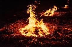 Jardim do fogo. Imagem de Stock