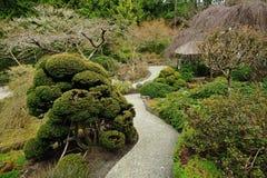 Jardim do japonês do inverno Foto de Stock Royalty Free