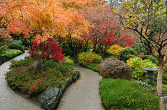 Jardim do japonês do outono Fotos de Stock