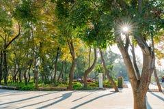 Jardim do mundo do mundo Flora Exposition de Taichung imagem de stock royalty free