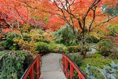 Jardim do outono Fotografia de Stock Royalty Free