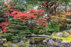 Jardim do outono no templo de Daigoji Kyoto, japão Imagem de Stock Royalty Free