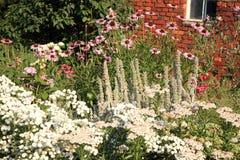 Jardim do país com perennials da flor fotos de stock
