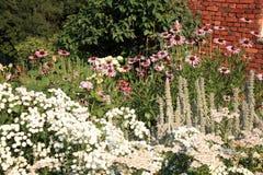 Jardim do país com perennials da flor fotos de stock royalty free