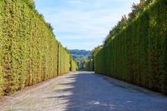 Jardim do palácio de Versalhes imagens de stock