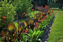 Jardim do parque Fotografia de Stock Royalty Free