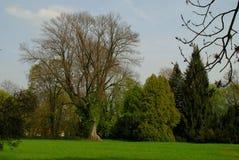 Jardim do parque Imagens de Stock Royalty Free