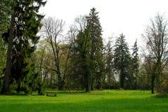 Jardim do parque Imagens de Stock