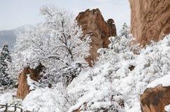 Jardim do parque dos deuses no inverno Foto de Stock