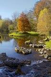 Jardim do St. Fiachra Foto de Stock