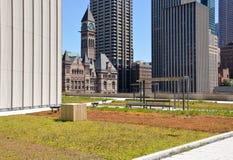 Jardim do telhado Fotografia de Stock Royalty Free