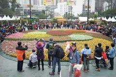 Jardim do Tulipa Imagens de Stock
