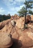 Jardim dos deuses, Colorado Foto de Stock