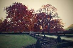 Jardim dos outonos Fotografia de Stock Royalty Free