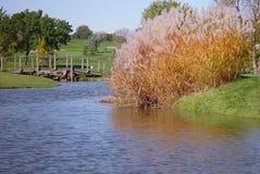 Jardim e lagoa Foto de Stock Royalty Free