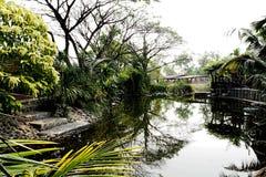 Jardim e lagoa Fotografia de Stock Royalty Free