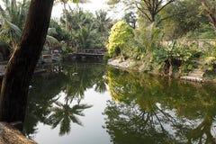 Jardim e lagoa Imagens de Stock