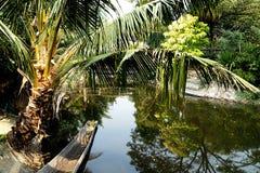 Jardim e lagoa Imagem de Stock