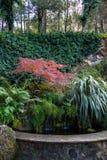 Jardim e lagoa do montanhês Imagem de Stock