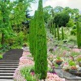 Jardim e outras plantas, uma escadaria e uma cachoeira em t imagem de stock