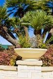 Jardim e plantador tropicais fotografia de stock