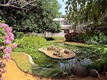 jardim em Auroville imagem de stock