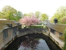 Jardim em Bruges fotos de stock royalty free
