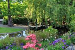 Jardim em Invercargill, Nova Zelândia Foto de Stock Royalty Free
