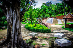 Jardim em Tailândia Chatuchak 46 Fotografia de Stock Royalty Free