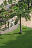 Jardim em um hotel Foto de Stock Royalty Free