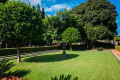 Jardim ensolarado verde Imagem de Stock