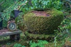 Jardim esquecido tempo Imagem de Stock Royalty Free