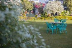 Jardim exótico Projeto da paisagem do jardim Imagens de Stock