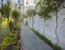 Jardim exótico Projeto da paisagem do jardim Imagem de Stock Royalty Free
