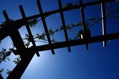 Jardim exterior da silhueta Fotografia de Stock