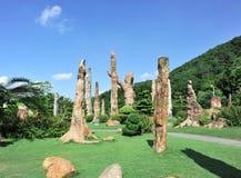Jardim fóssil da floresta Fotos de Stock
