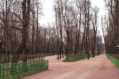 Jardim fechado a secar Imagens de Stock Royalty Free
