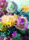 Jardim floral colorido bonito do ramalhete do áster das flores do fundo do sumário da arte da aquarela Foto de Stock