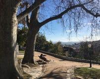 Jardim hace Torel Fotos de archivo libres de regalías