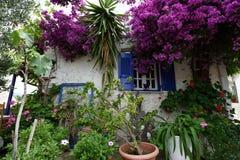 Jardim home, Corfu, Grécia Imagens de Stock Royalty Free
