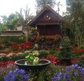 Jardim ideal Foto de Stock