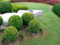 Jardim inglês Foto de Stock