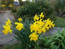 Jardim inglês do país Imagem de Stock Royalty Free