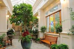 Jardim interno Imagem de Stock