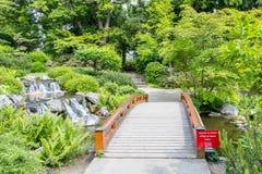 Jardim japonês bonito e ponte de madeira imagem de stock royalty free
